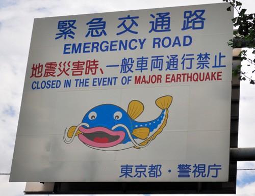 Namazu, el pez de los Terremotos