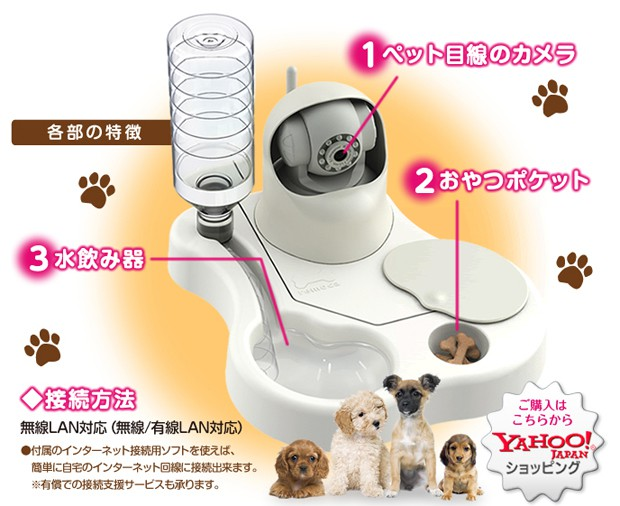 Nuevo invento japonés; Comederos de mascotas con Web Cams