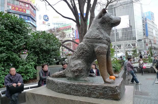 actualidad curiosidades japon  ¿Conoces a Hachiko? Te encantará su historia