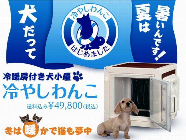 actualidad animales curiosidades japon sociedad  Invento japonés: Caseta para perros con aire acondicionado