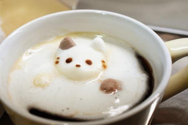 Baños Humanos Japoneses:Gatitos bañandonse en el café