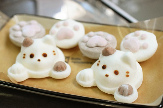 actualidad animales comida curiosidades japon kawaii sociedad  Gatitos bañandonse en el café