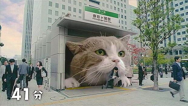 El anuncio japonés del momento, está protagonizado por un adorable gato gigante