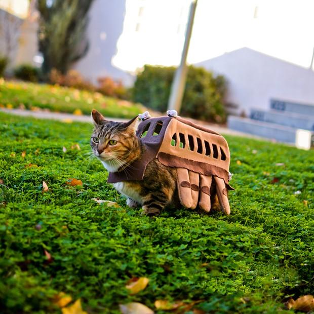 Nekobasu el gato bus de totoro visto en un jard n for Ahuyentar gatos de mi jardin