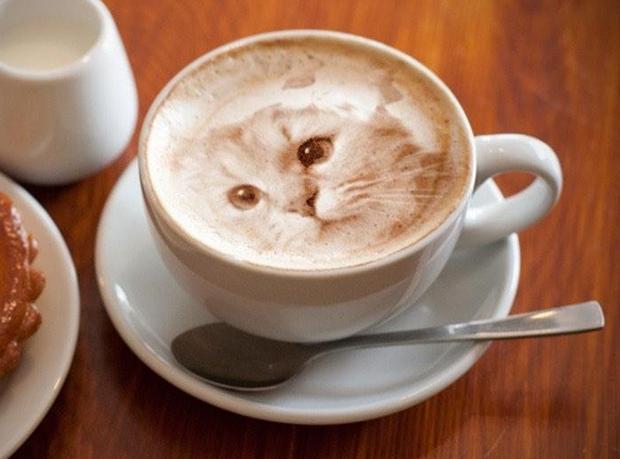 actualidad animales comida curiosidades japon kawaii ocio sociedad  ¡Arte Latte ultra realista!