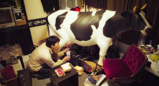 actualidad comida curiosidades kawaii negocios ocio sociedad spots video  Nissin regala una vaca que dispensa agua caliente por las ubres