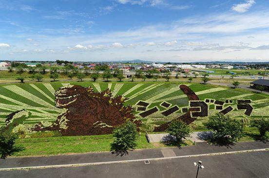 Visto en Japón: Godzilla en un arrozal!