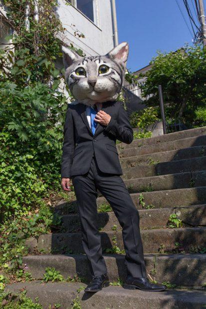 curiosidades japon kawaii  Visto en Japón cabezas de gatos gigantes