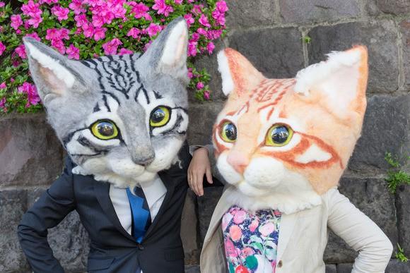 Visto en Japón cabezas de gatos gigantes