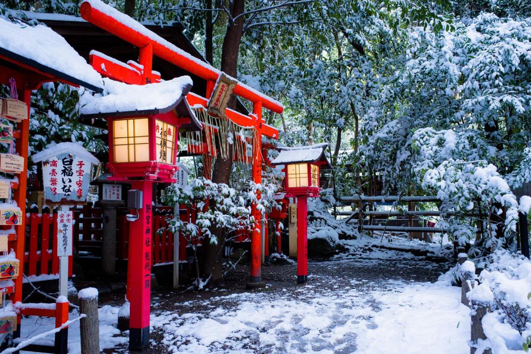 ¡Kyoto nevado! ❄️