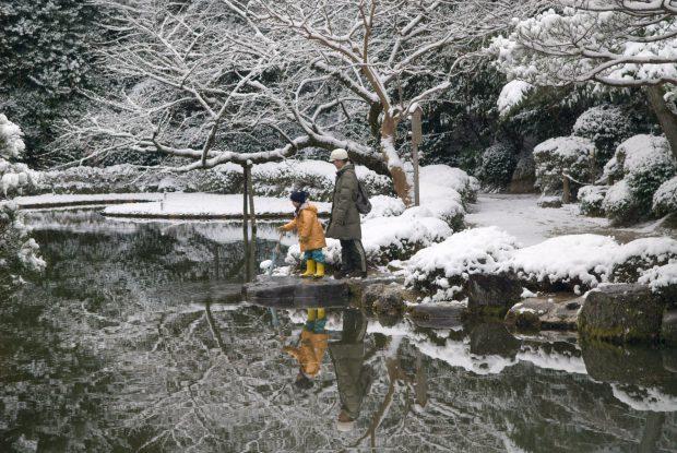 actualidad japon tokyo  ¡Kyoto nevado! ❄️