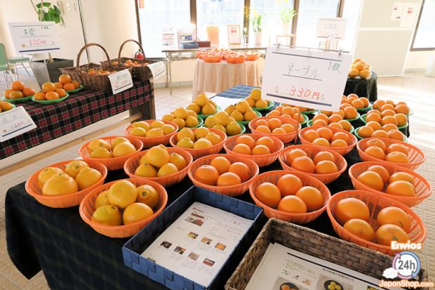 Combini Lovers comida japonshop  Probamos en JaponShop.com el KitKat Japones de naranja Iyokan