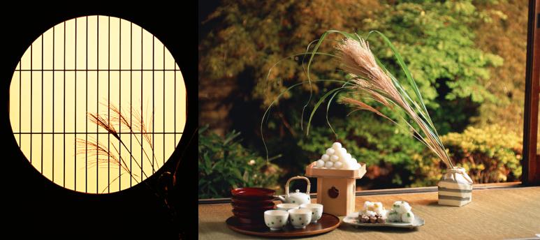 Tsukimi Japonshop con mochis