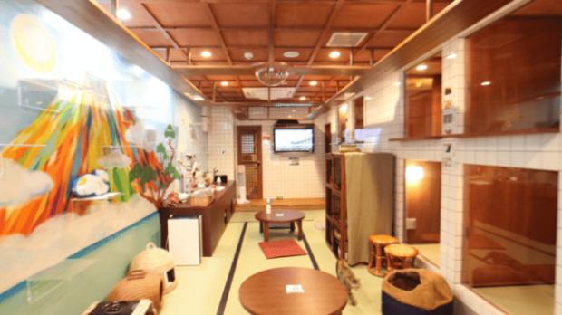 actualidad curiosidades japon  Pasando el finde en el Neko cafe-hotel Neko Yokujo y Neko Hatago