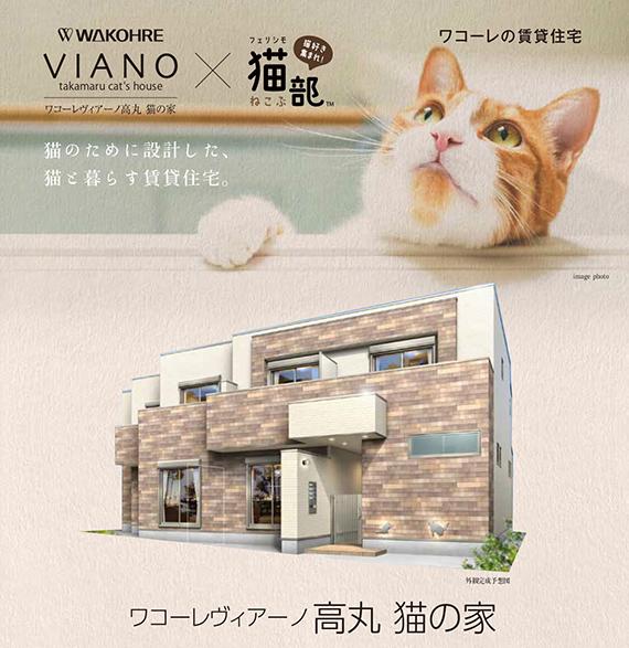 Casas neko friendly, nueva tendencia de construcción en Japón, especial para gatos!