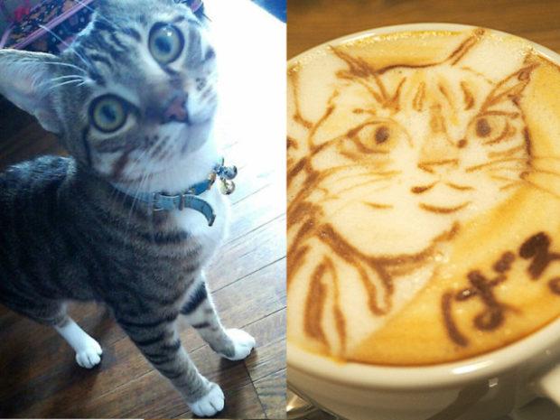 actualidad curiosidades japon  HATCOFFEE El latte ART 2D y 3D más espectacular de todo Japón!!