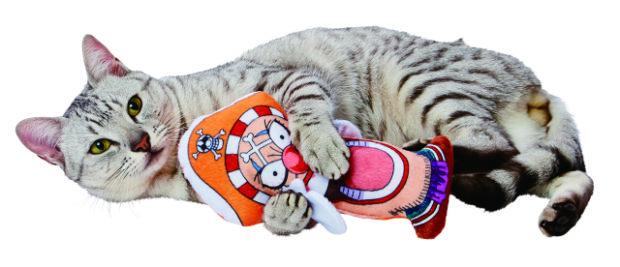 actualidad curiosidades japon  Nekos e Inus nakamas!! A por el One Piece!