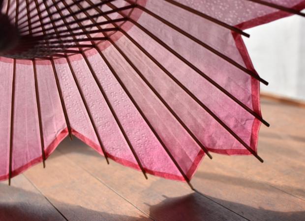curiosidades japon  Sombrilla Sakura Blossom, la sombrilla perfecta para el Hanami!
