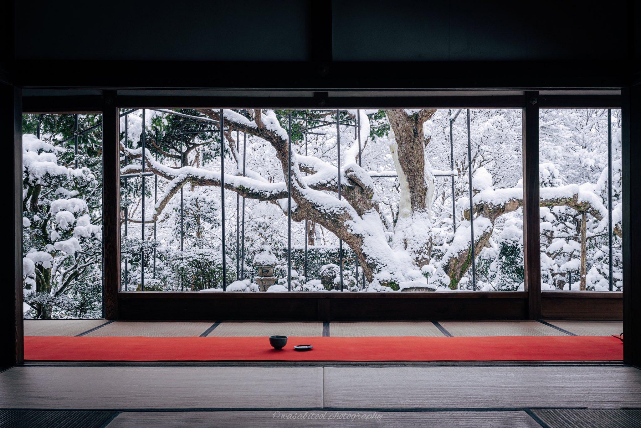 Un paseo de invierno por Kyoto nevado y un poco de Hanami con nieve!