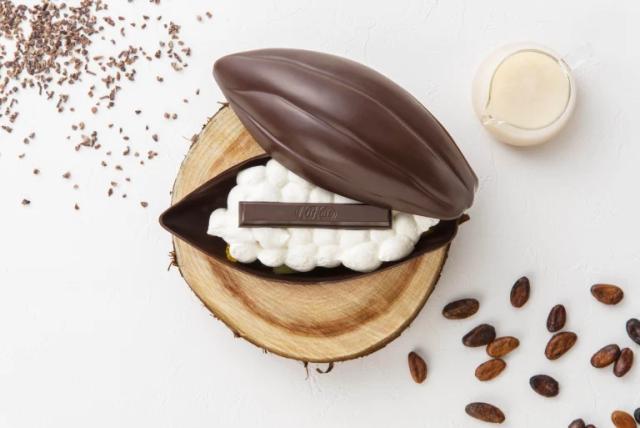 Cocoa pod o vaina de Chocolte, el último postre definitivo de Kit Kat Japón!