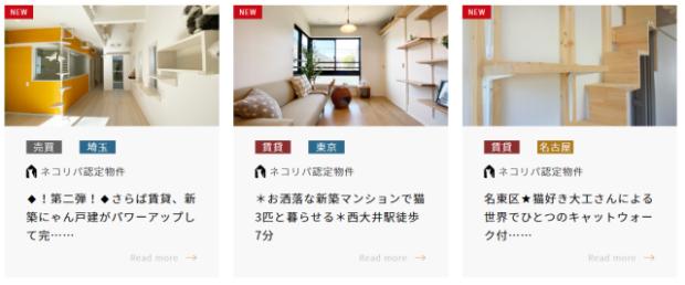 curiosidades japon  ¿Buscas casa en Japón? Si tienes nekos, agencias especiales con casas especiales!