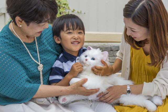 Neko-chan el gato robot que no es Doraemon que revoluciona Japón!