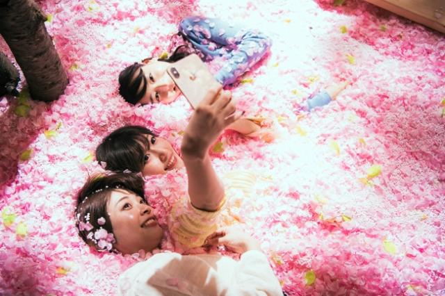Sakura Chill Bar con piscina de pétalos de cerezo y Sake de Sakura!