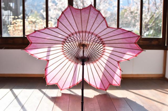 Sombrilla Sakura Blossom, la sombrilla perfecta para el Hanami!
