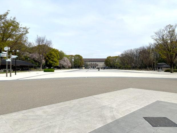 japon  Nieve, Sakura y Ueno Park sin gente por el Coronavirus, un paisaje nunca visto