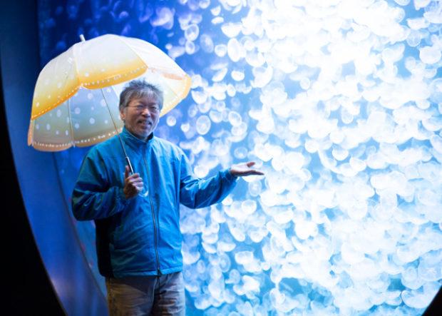 curiosidades japon  Alucinantes paraguas medusa! La última sensación de Japón!