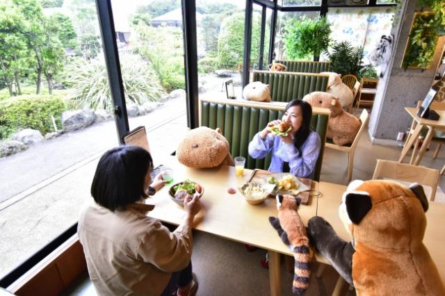 ¡Distancia Social en restaurante japonés con peluches de Capibaras!