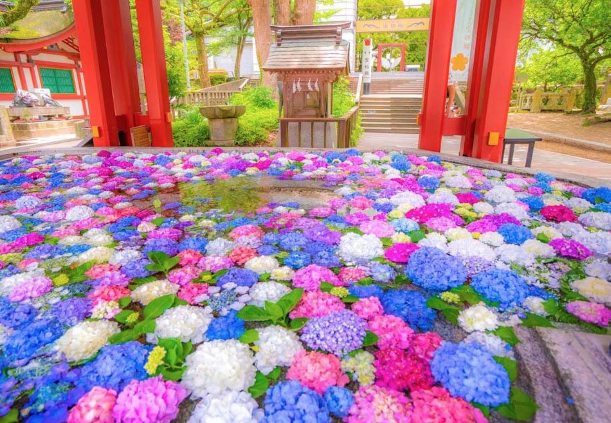 La tradición se encuentra con el verano en los arreglos florales de los templos