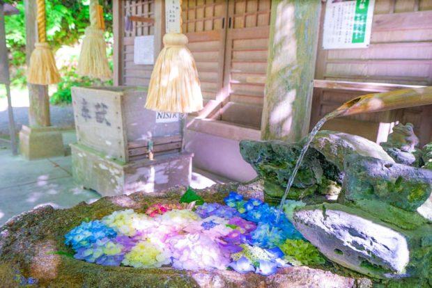 curiosidades japon  La tradición se encuentra con el verano en los arreglos florales de los templos